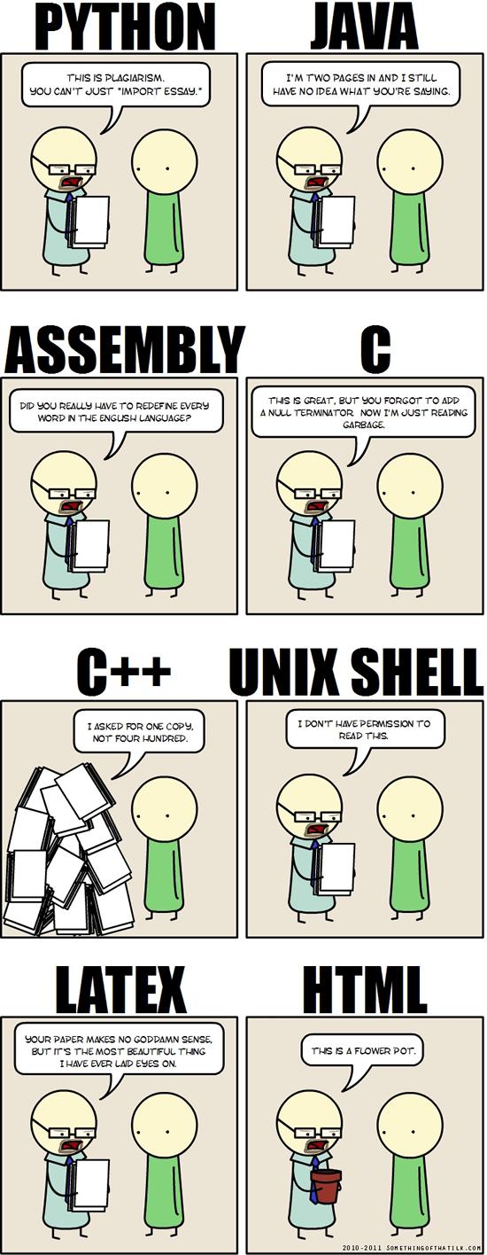 relecture-code-java-python-shell-assembleur.jpg