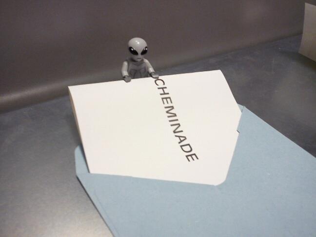 vote-cheminade.jpg
