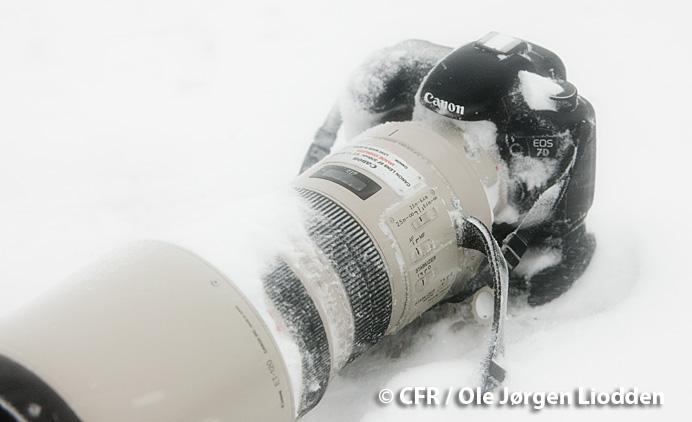 canon-7D-neige.jpg